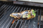 grill-roasted-chile