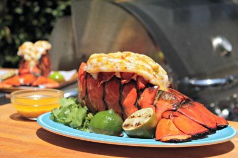 grilled lobster - horz
