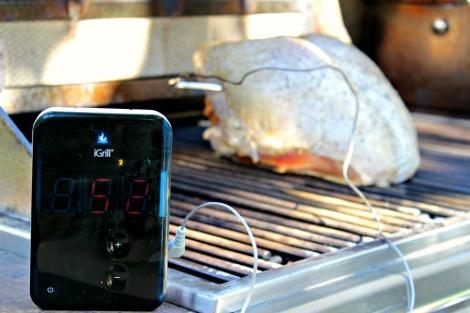 Coriander and Herb Turkey Breast 013edit